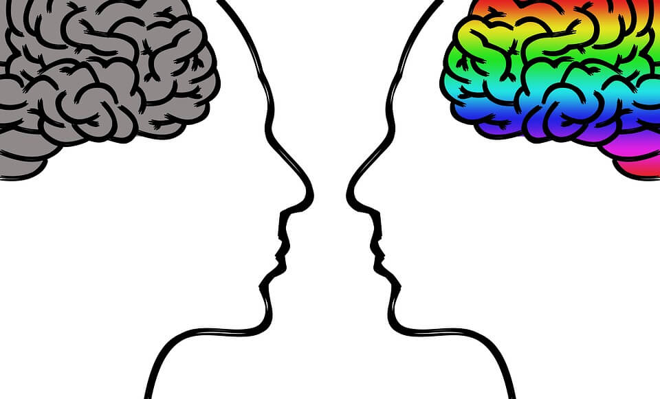 An image of the profiles of two heads facing each other, one with a grey brain and one with a brightly-colored brain, representing the impact of unconscious bias in WV by limiting diversity in the workplace and how an experienced attorney can help.