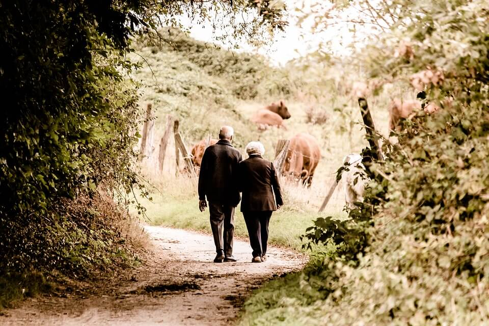 An image of an elderly couple walking down a path, representing the importance of being forward-looking in regard to estate plans and social security.