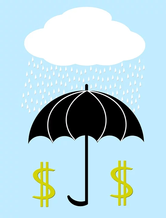 Image of an umbrella shielding dollar signs from a raincloud, representing how attorney Anna M. Price of Jenkins Fenstermaker, PLLC can help you with estate planning asset protection strategies in WV, KY, and OH like self-settled spendthrift trusts.